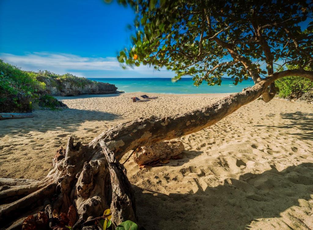 Sosua Ocean Village, Sosúa, Dominican Republic - Booking.com