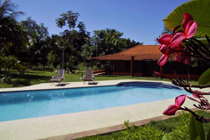 The swimming pool at or near Pantanal Ranch Meia Lua