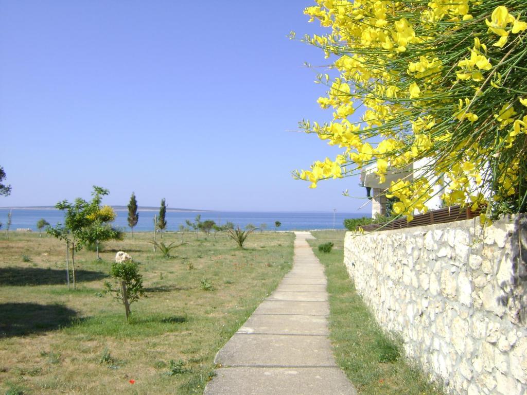 Apartment Rona, Novalja, Croatia - Booking.com