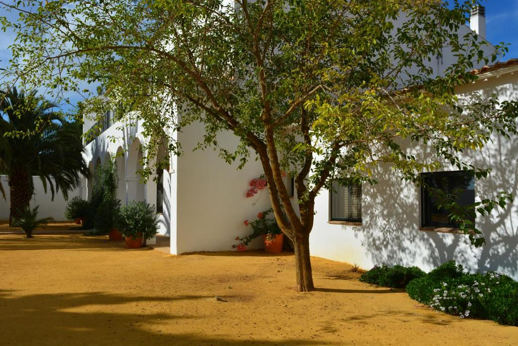 boutique hotels extremadura  43