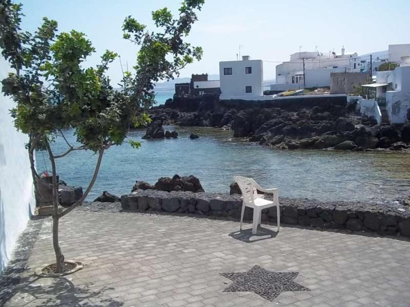 Imagen del Alypunta