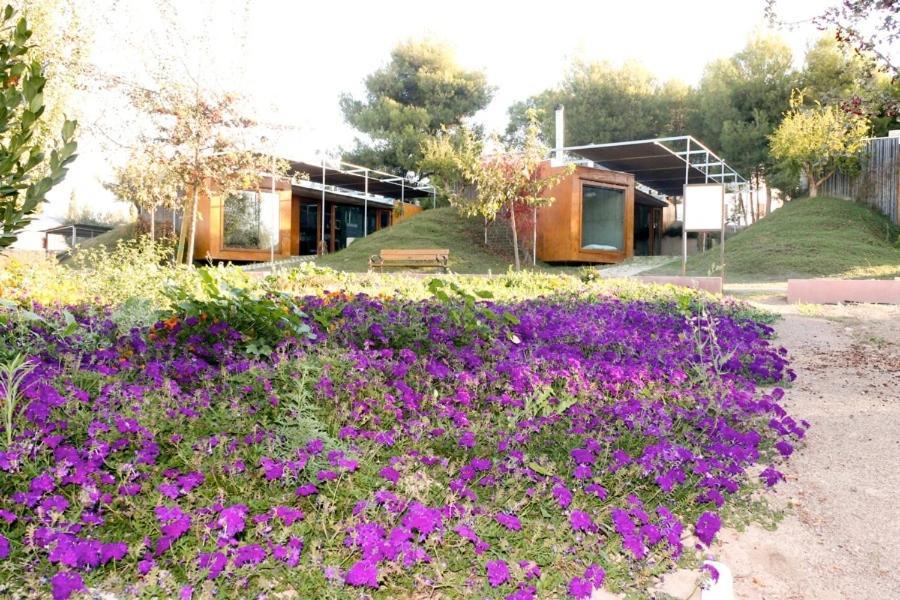 Apartments In La Copa Murcia