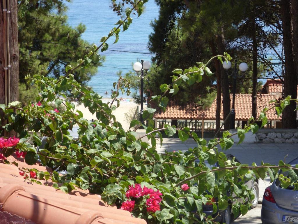 Апартаменты на побережье остров Скала недорого