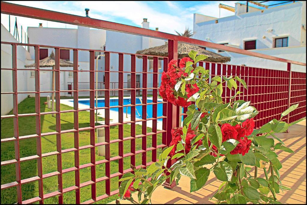 Bonita foto de Apartamento Sabina Conil
