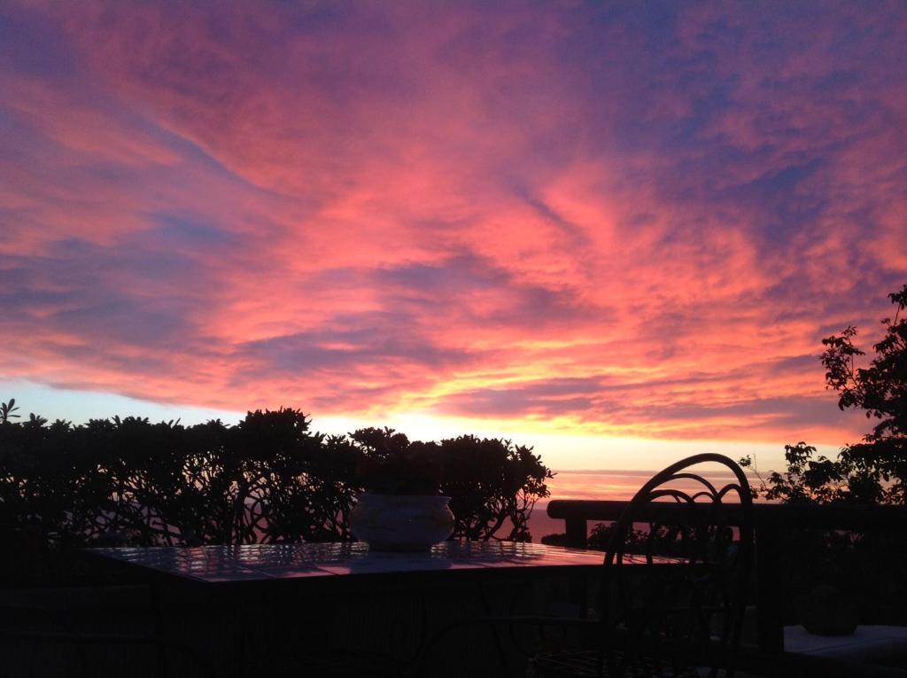 Bien-aimé Bed & Breakfast La Terrazzina sul tramonto (Italia Ischia  ZY46