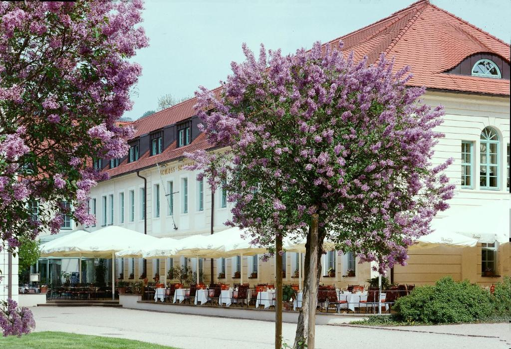A porch or other outdoor area at Schloss Hotel Dresden Pillnitz