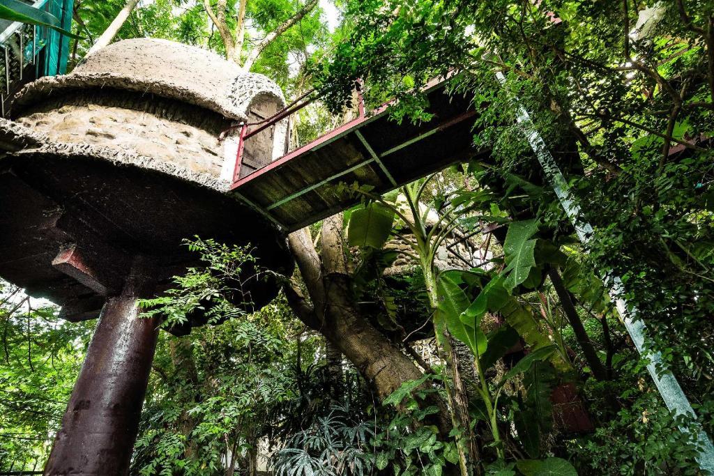 Marvelous Vietnam Treehouse Part - 2: Booking.com