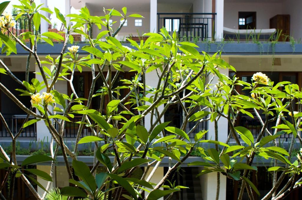 納尼之家2號酒店室外花園