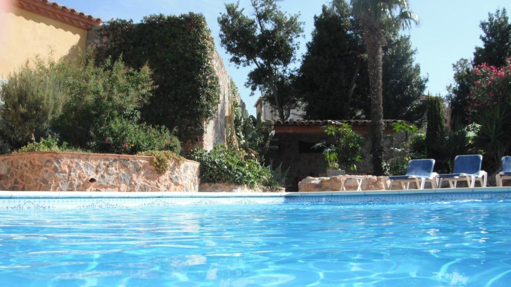 R sidence jardin de palme fransa lapalme for Palme de piscine