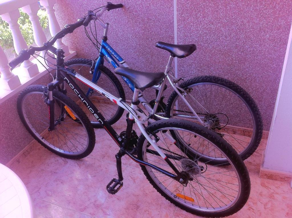 Велосипеды в аренду торревьеха недвижимость
