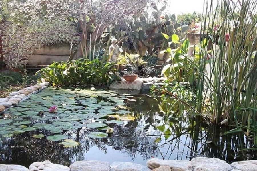 Oasi blu vacanze mare siracusa fontane bianche prezzi for Siracusa vacanze mare