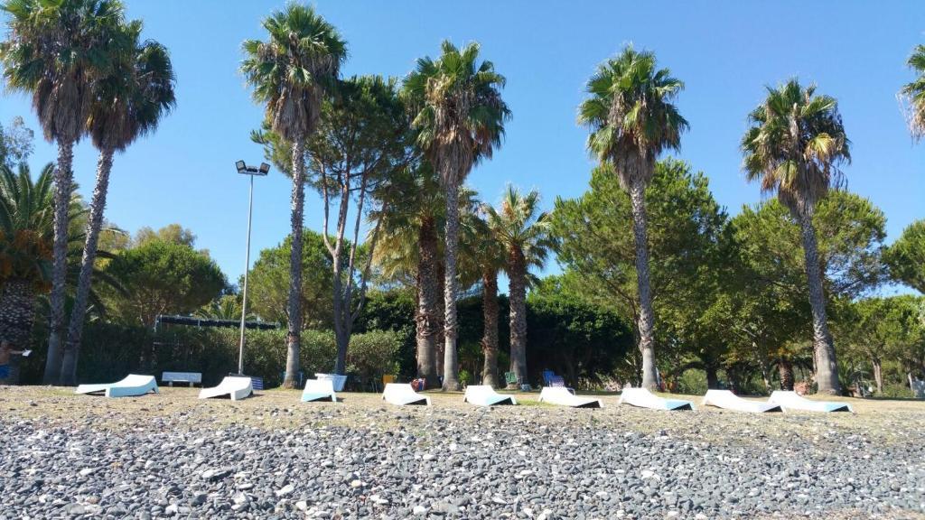 Nearby hotel : Baia Di Arcile