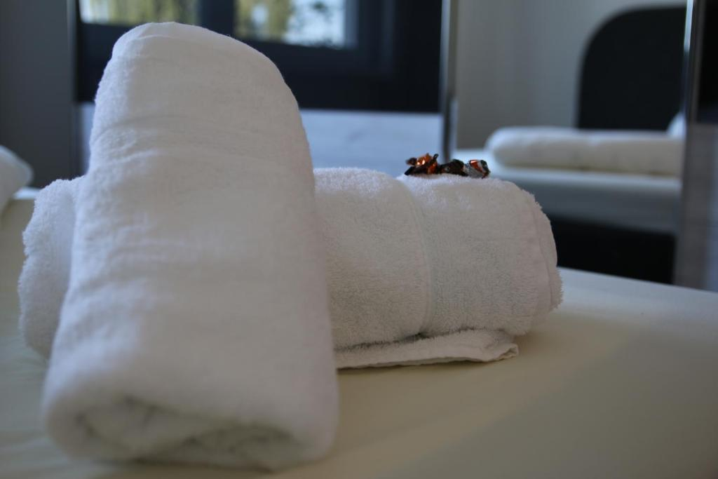 Spa and/or other wellness facilities at Living Neuburg