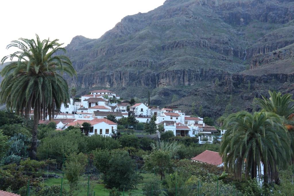 Apartments In Tejeda Gran Canaria