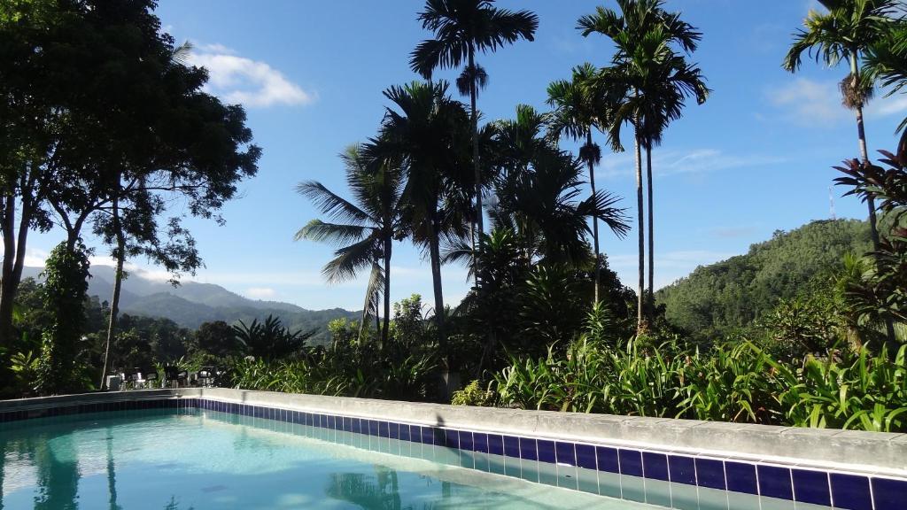 The swimming pool at or near Strathisla Tea Estate Bungalow