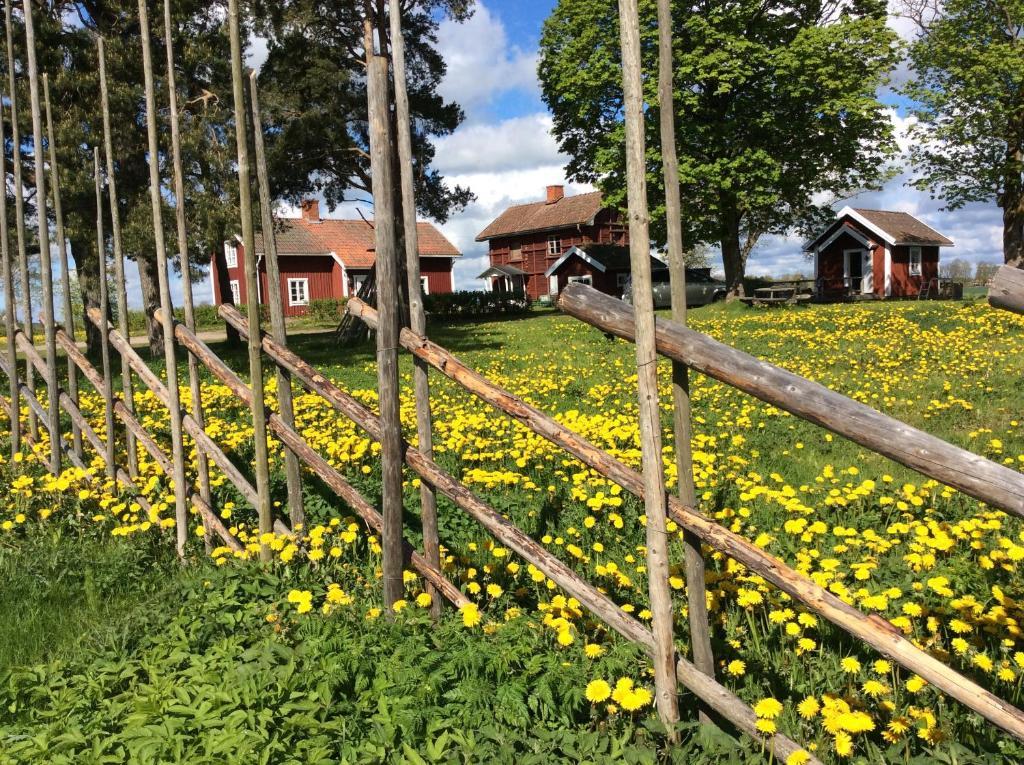En trädgård utanför Skyberga Torp Kumla