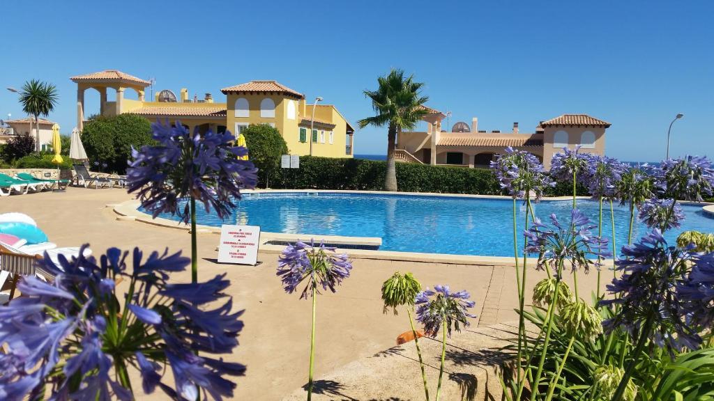 Mallorca Dreaming