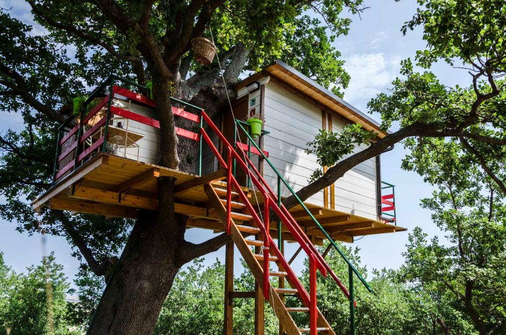 Casa sull 39 albero lentella prezzi aggiornati per il 2018 for Case da costruire