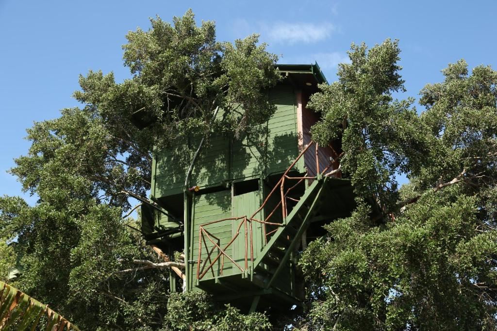 luxurious tree house hotel. Boendets Bildgalleri Luxurious Tree House Hotel I