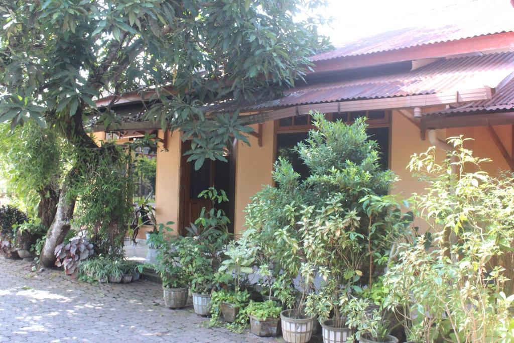 Cek Promo Hotel 80173840 rekomendasi hotel hotel belitung