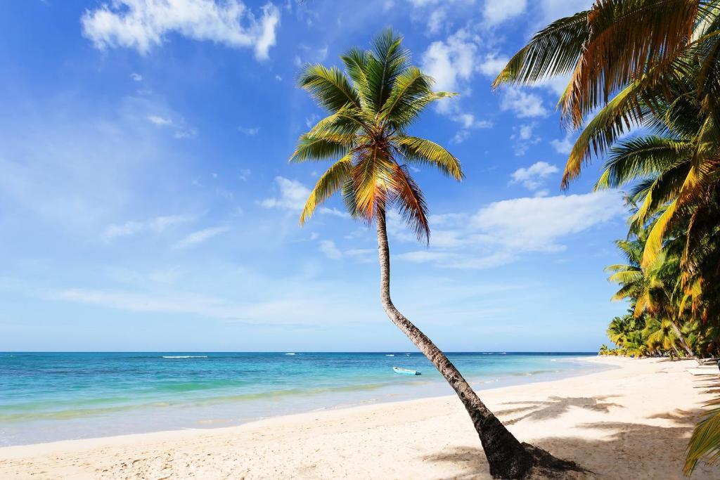 Residence Playa Ballenas Las Terrenas Dominican Republic
