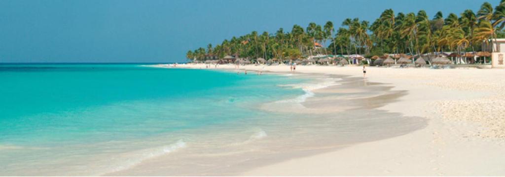 Αποτέλεσμα εικόνας για Eagle Beach, Aruba