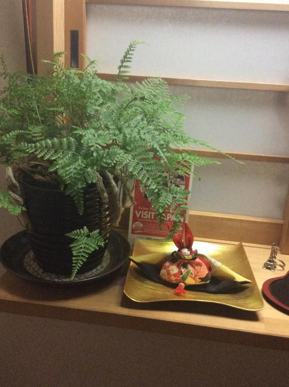 Guesthouse Tanaka-ya, Kyoto, Japan - Booking.com on