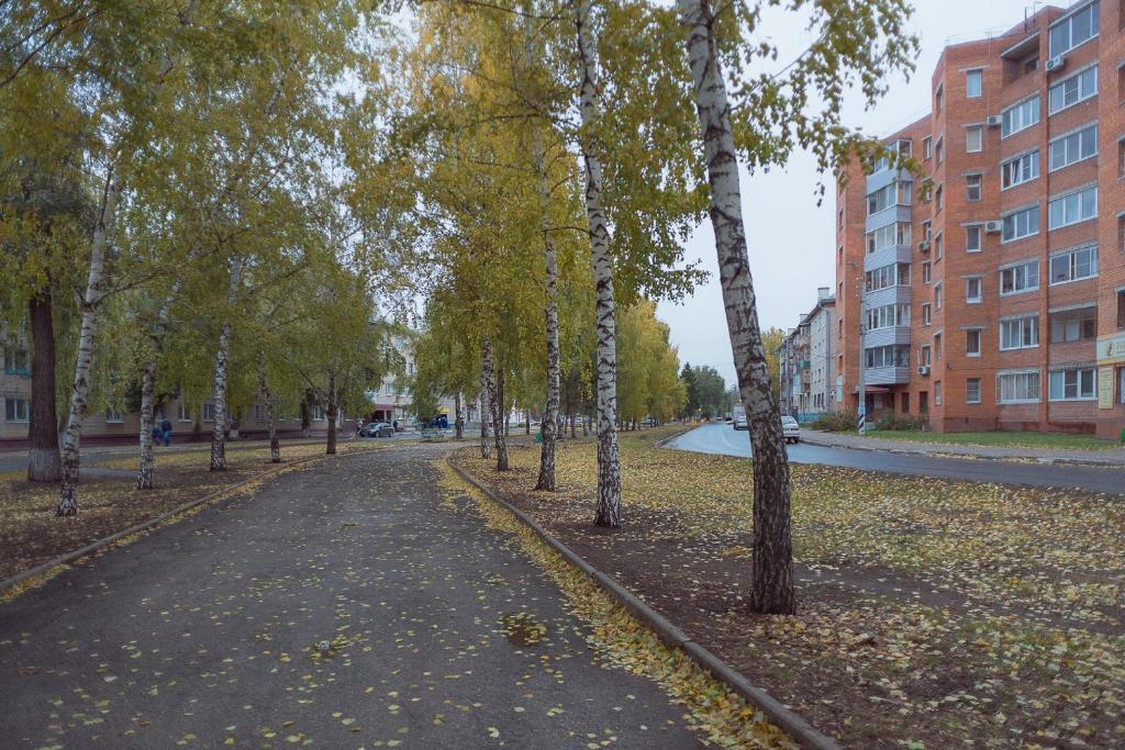 В Тольятти благоустроят Молодежный бульвар