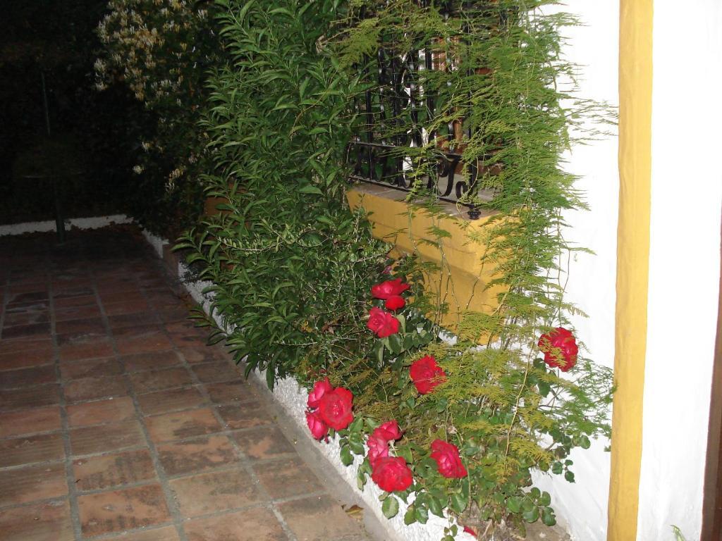 Foto del Alojamientos Vijilia