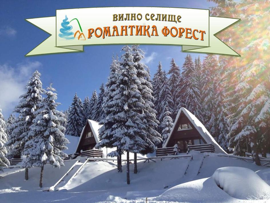 Хотелски комплекс Вилно селище Романтика Форест - Доспат