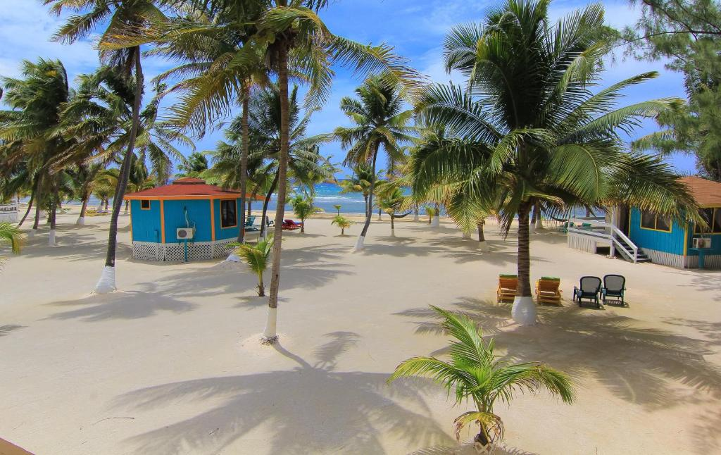 Blue Marlin Beach Resort Reserve Now Gallery Image Of This Property