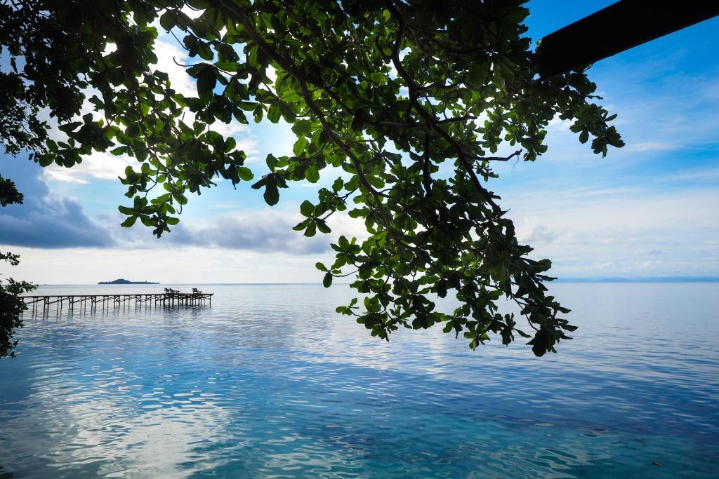 Raja ampat dive resort tapokreng indonesia - Raja ampat dive resort ...
