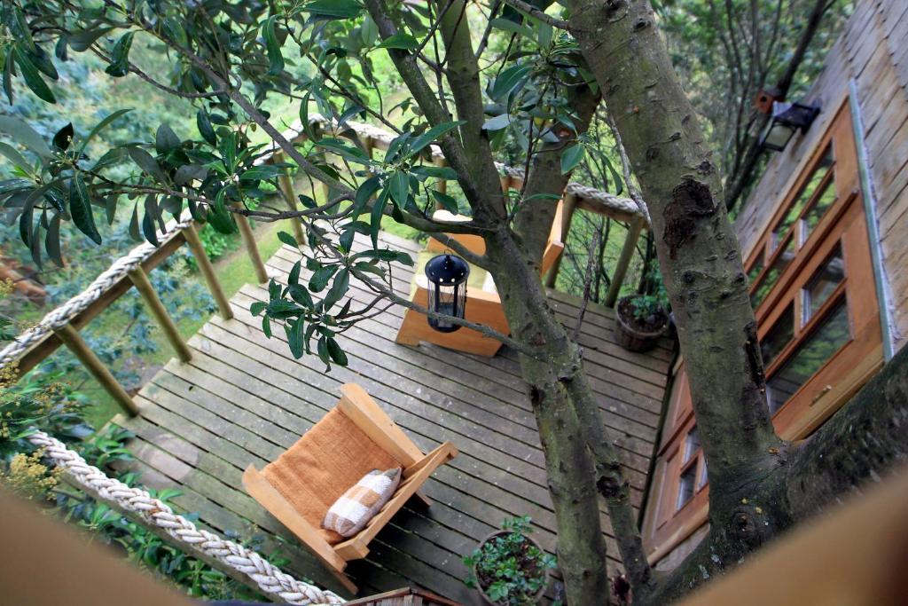 Vakantiehuis La Casa Del árbol De Chiloé Chili Castro Bookingcom