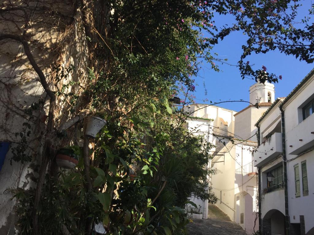 Imagen del Pitxot Apartment