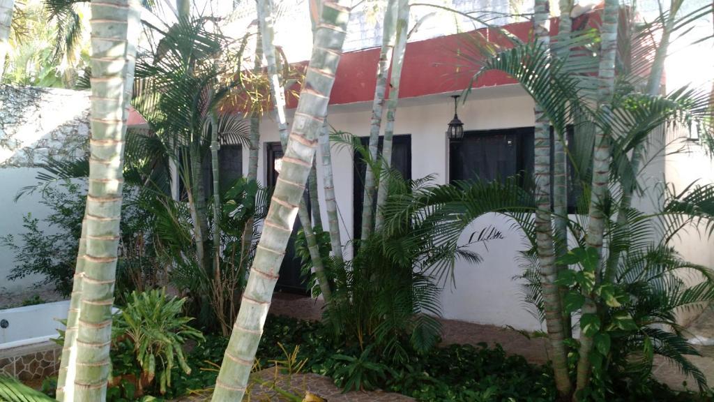 Apartments In Dzibikak Yucatán