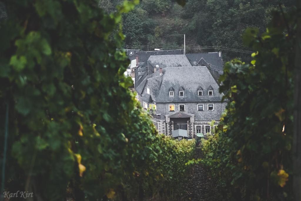 Weingut Lennard Bacharach Wohnung 7