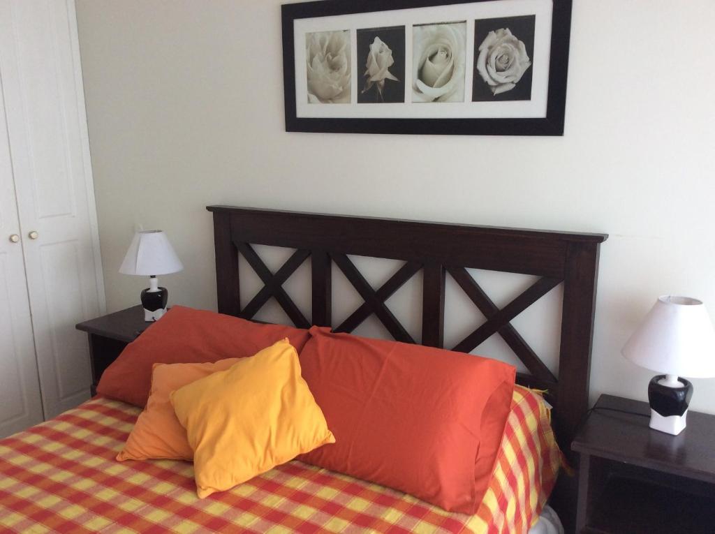 Apartments In San Carlos Maldonado