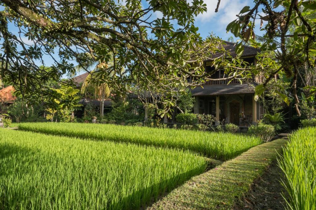 ananda cottages ubud indonesia booking com rh booking com ananda cottages ubud contact ananda cottages ubud address