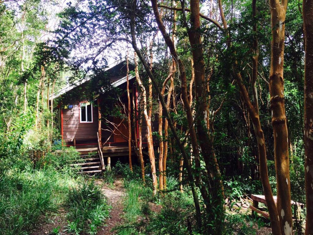Vacation home casa en el bosque valdivia chile - Casas el bosque ...