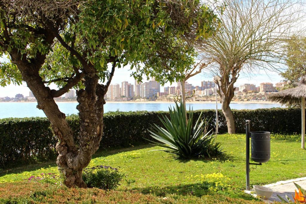 Bonita foto de Apartamento Cabo Azul