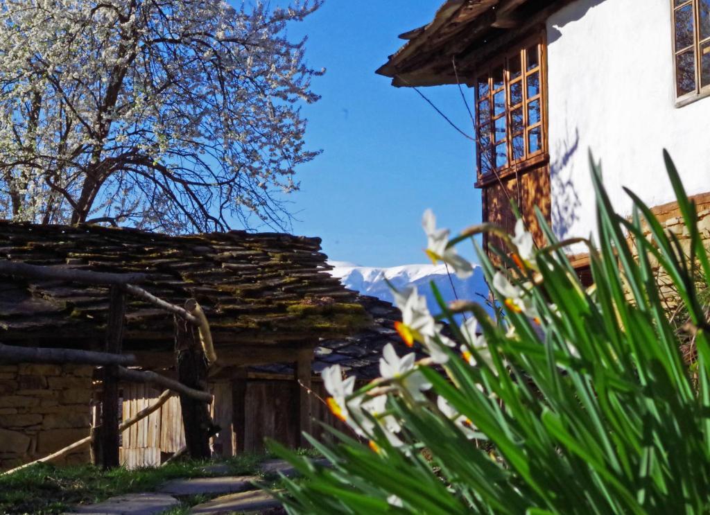 Ваканционна къща Karashka - Априлци