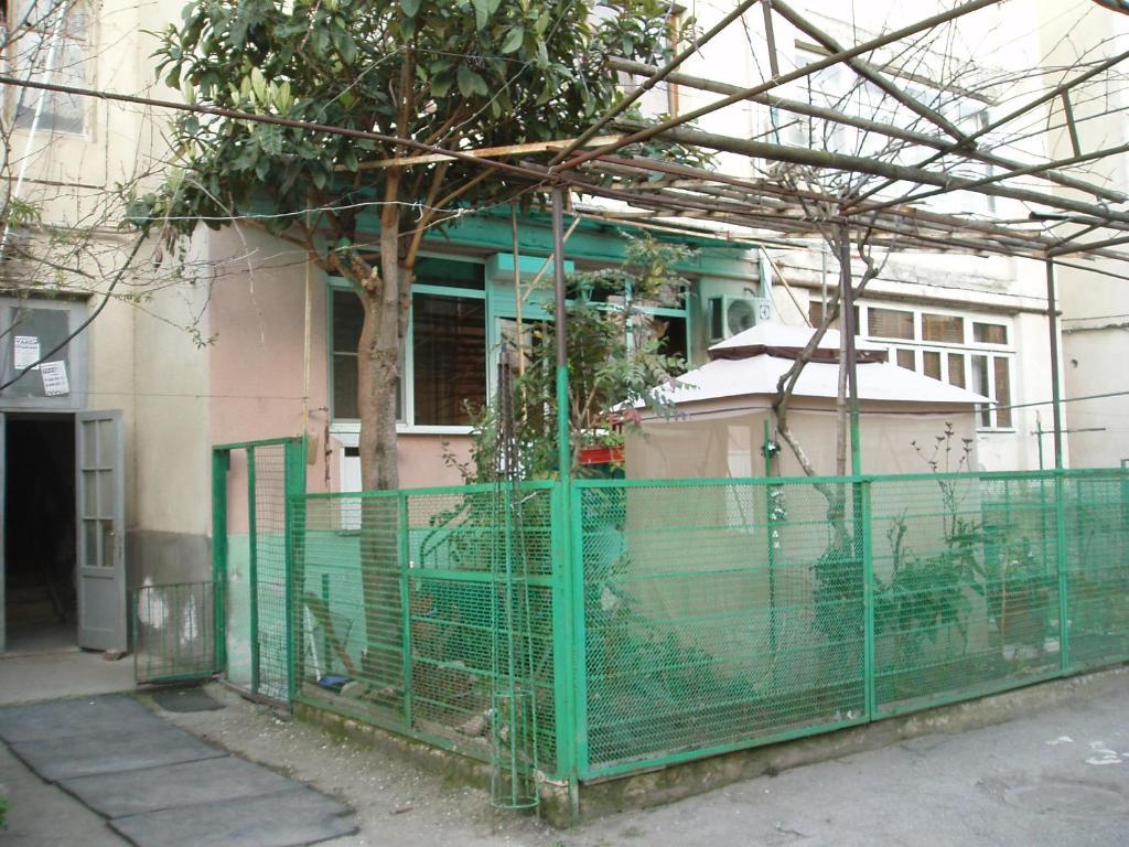 Abkhazia, Gagra. Sights and entertainment 23