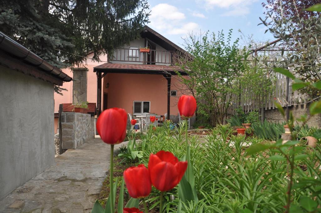 Ваканционна къща Holiday Home Vilata - Кърджали