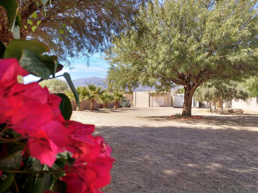 Apartment Encantos De La Cordillera Fiambala Argentina Booking Com # Muebles Nelly Maria