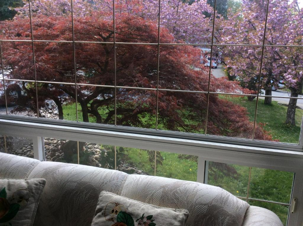 Winsome Hotel Vancouver Back Gardens Abbotsford Canada  Bookingcom With Magnificent Vancouver Back Gardens Abbotsford Canada Deals With Extraordinary Garden House Gretna Also Sainsburys Garden Tools In Addition Cheap Garden Paving And Poundland Welwyn Garden City As Well As Tasia Maris Gardens Nissi Beach Additionally Gaudi Gardens From Bookingcom With   Magnificent Hotel Vancouver Back Gardens Abbotsford Canada  Bookingcom With Extraordinary Vancouver Back Gardens Abbotsford Canada Deals And Winsome Garden House Gretna Also Sainsburys Garden Tools In Addition Cheap Garden Paving From Bookingcom