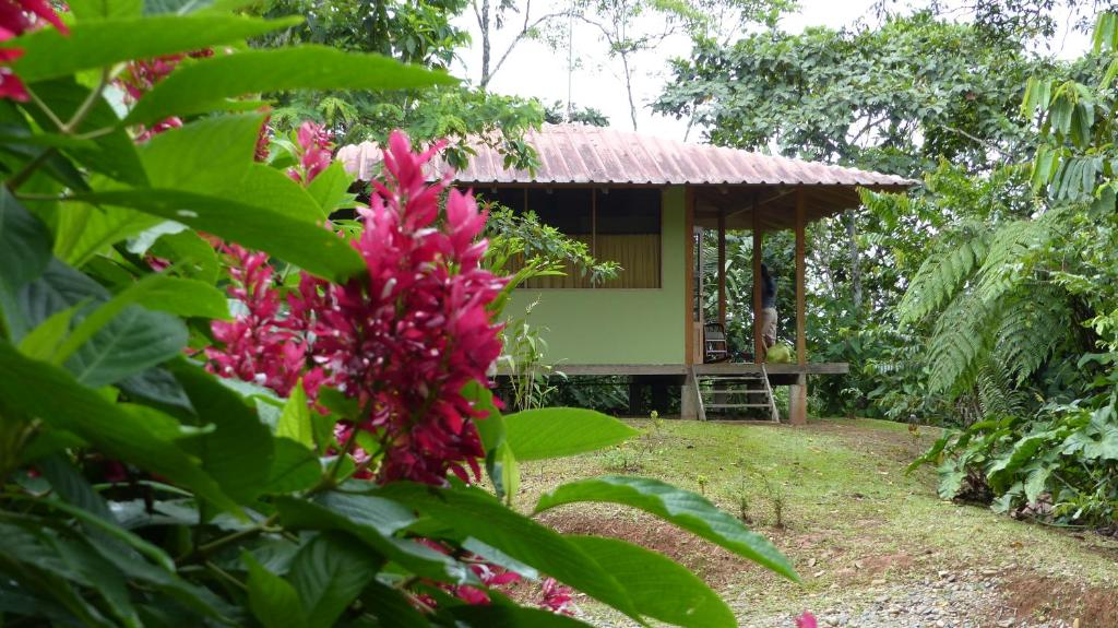 Yachana Lodge, Chontapunta, Ecuador - Booking.com
