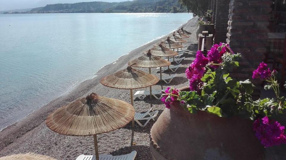 Guesthouse Castella Beach Alissos Greece Booking Com