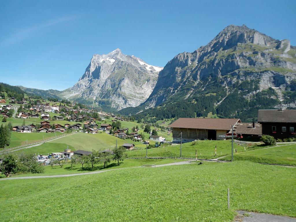 Car Parking Grindelwald Switzerland