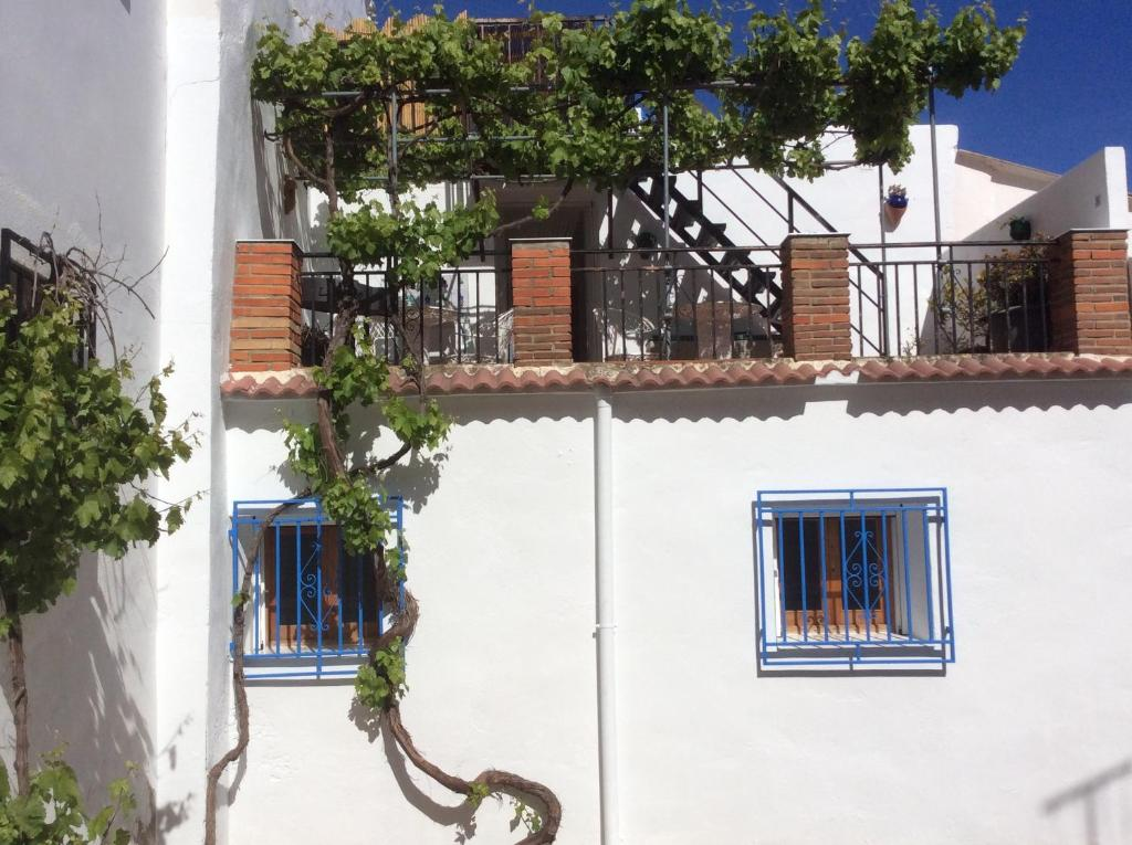 Apartments In Polopos Andalucía
