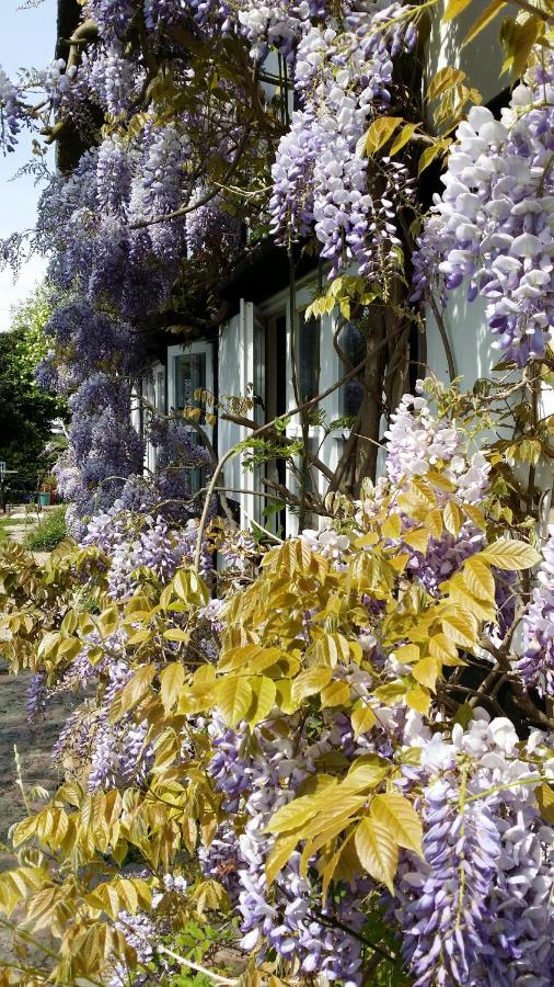 Bed And Breakfasts In Ripple Worcestershire